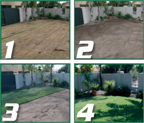 Four Steps to Creating a Legend Lawn